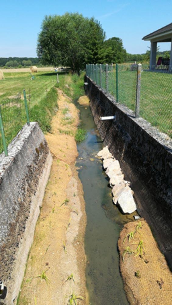 Lit d'étiage - Nied du Bischwald à Freybouse