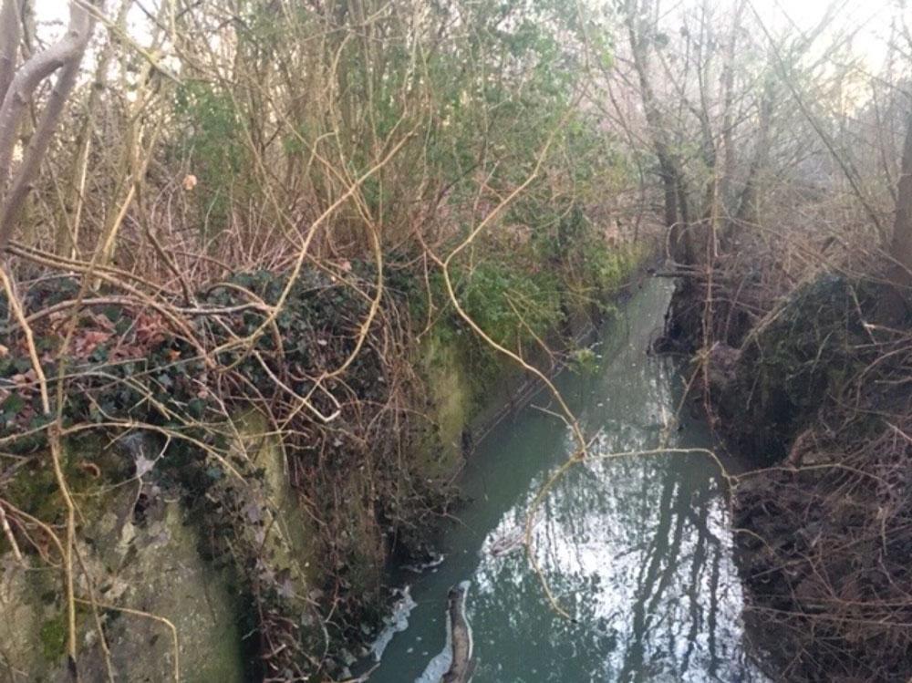 Mur en rive gauche du ruisseau de la Rigole à démanteler – Commune de Les Etangs